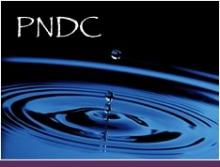 PNDC - A drop falling into a pool.
